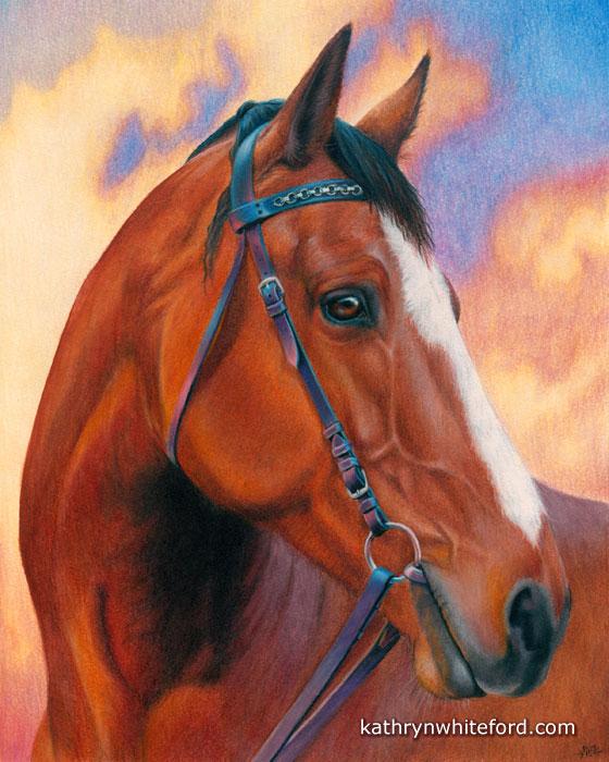 Caran d'Ache Luminance Pencils Horse Portrait